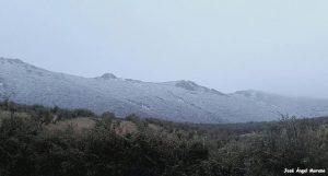 Nieve 14