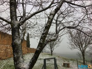 Nieve 10