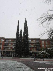 Nieve 18