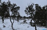 Ciudad Real supera la media de precipitación de enero